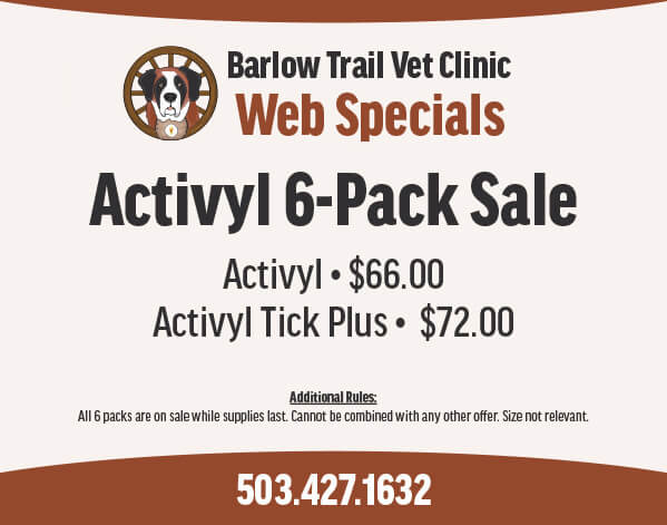 BTVC Web-Coupons