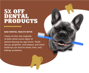 5% Off Dental Products